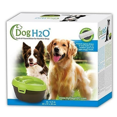 Bebedero Dog H2O