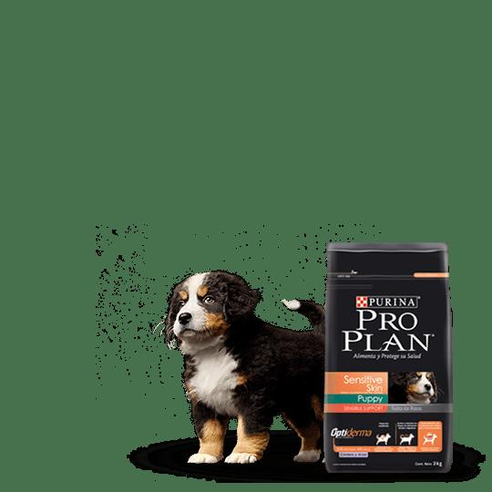 Pro Plan Puppy Sensitive Skin Puppy Cordero