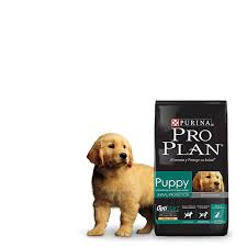 Pro Plan Puppy Raza Media