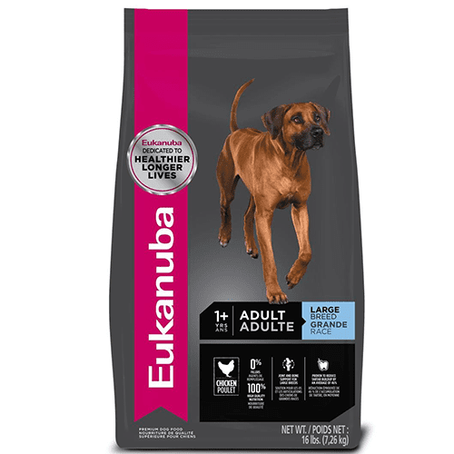 Eukanuba Adulto Large