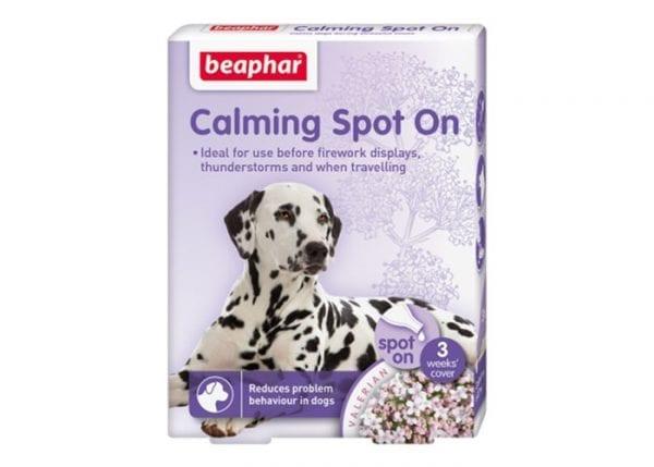 Calming Spot On Perro