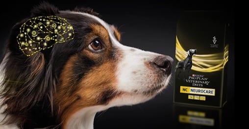 Veterinary Diets Neurológico Canine