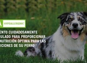 Veterinary Diets HA Hypoallergenic Canine