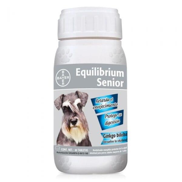 Equilibrium Senior