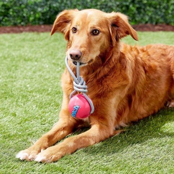 Pelota Planet Dog Fetch Ball Rosa
