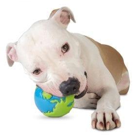 Pelota Planet Dog Orbee