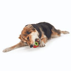 Juguete Planet Dog Orbee Tuff Frutilla