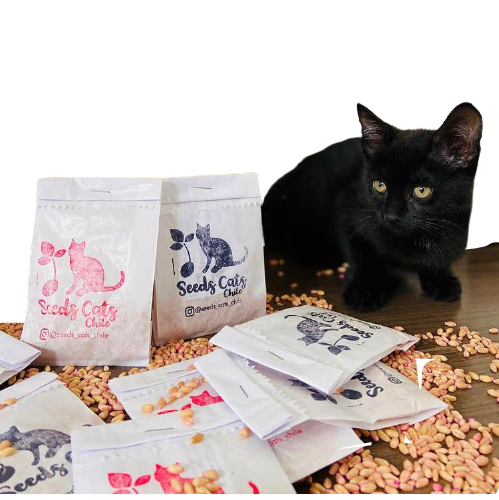 Hierba Gatera Seeds Cats