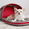 Bolso Kong 2 in 1 Pet Carrier & Travel Mat