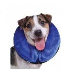 Kong Cloud Collar Isabelino Inflable S