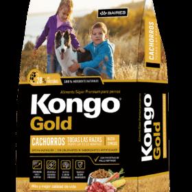 Kongo Gold Cachorro
